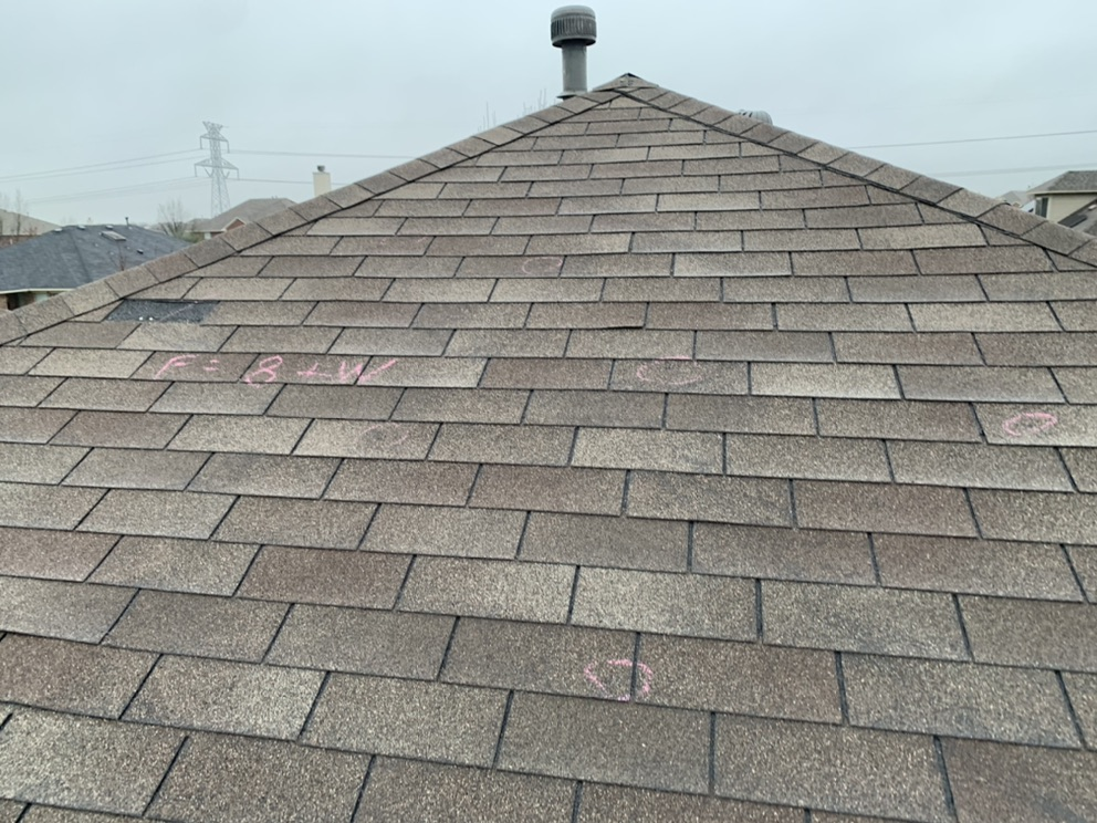 Roof Inspection: Everything You Need to Know About It